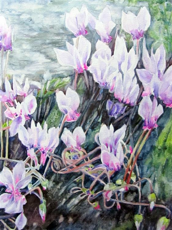 Sheila Connor - Cyclamen - Watercolour